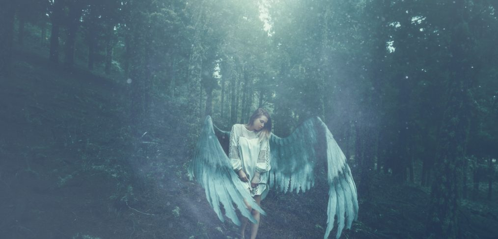 Wings. Taking wing and taking a leap of faith.